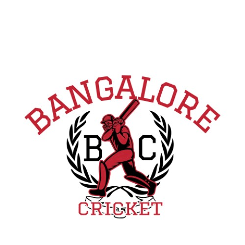 Cricket 13