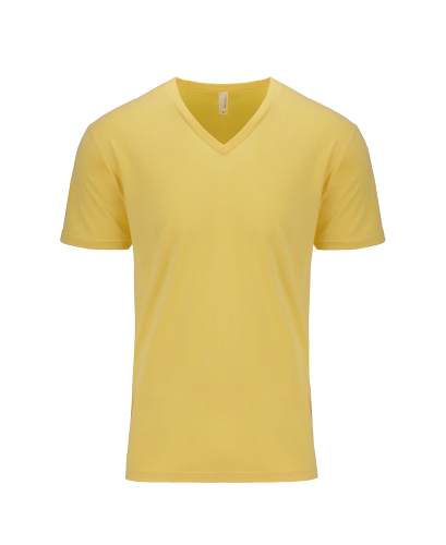 Next Level Men??s Premium V-neck Tee