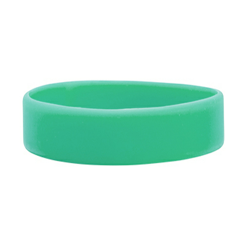 Teal Color Filled Wristband 1