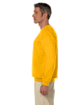 Gold 7.75 oz. Heavy Blend™ 50/50 Fleece Crew as seen from the sleeveright