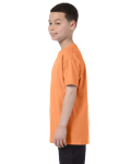 Old Gold Classic Cotton  Youth T as seen from the sleeveright