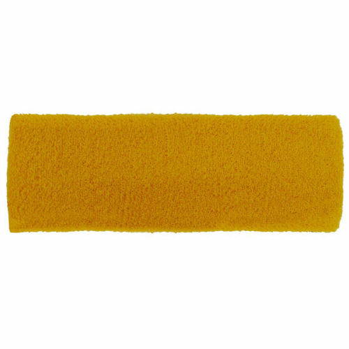 Gold Headbands as seen from the front