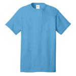 Aquatic Blue Port & Company 5.4-oz 100% Cotton T-Shirt as seen from the front