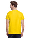 Daisy Premium Ultra Cotton T as seen from the back
