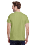 Kiwi Premium Ultra Cotton T as seen from the back