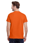 Orange Premium Ultra Cotton T as seen from the back