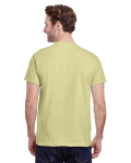 Pistachio Premium Ultra Cotton T as seen from the back