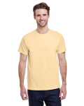 Vegas Gold Premium Ultra Cotton T as seen from the front