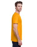 Gold Classic Cotton T as seen from the sleeveleft