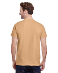Old Gold Classic Cotton T as seen from the back