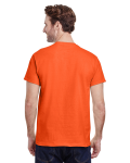 Orange Classic Cotton T as seen from the back