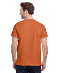Sunset Classic Cotton T as seen from the back