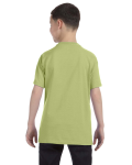 Kiwi Classic Cotton  Youth T as seen from the back