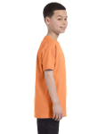 Old Gold Classic Cotton  Youth T as seen from the sleeveleft