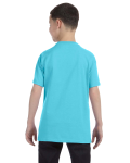 Sky Classic Cotton  Youth T as seen from the back