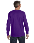 Purple Classic Cotton Long-Sleeve T as seen from the back