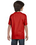 Paprika Youth DryBlend 5.6 oz., 50/50 T-Shirt as seen from the back