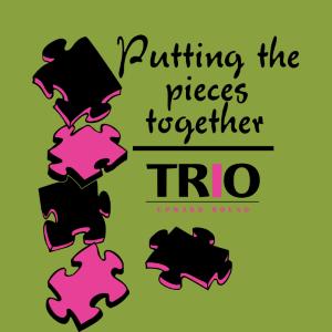 06-029-TRIO